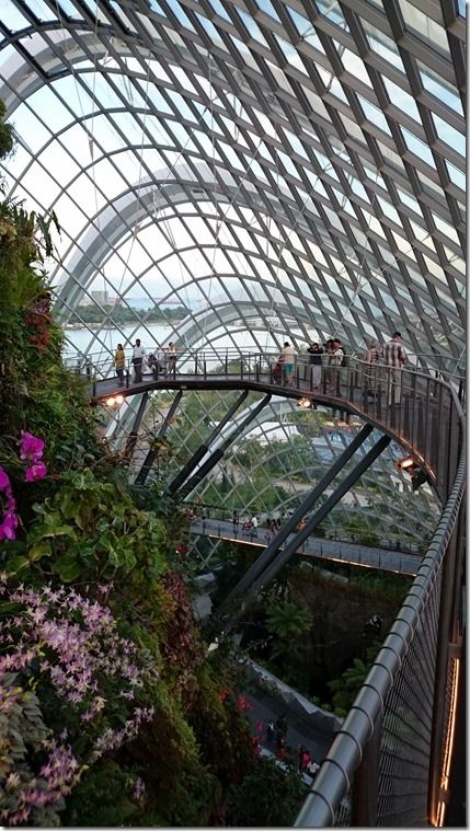 Cloud Forest Dome At Singapore Gardens By The Bay A 35 Metre Tall Mountain Covered In Lush Vegetation Shr Singapore Garden Singapore Tour Holiday In Singapore