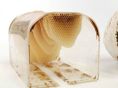 Superieur Backyard Beekeeping Has Never Been More Streamlined Than This. U0027To Beeu0027 Is