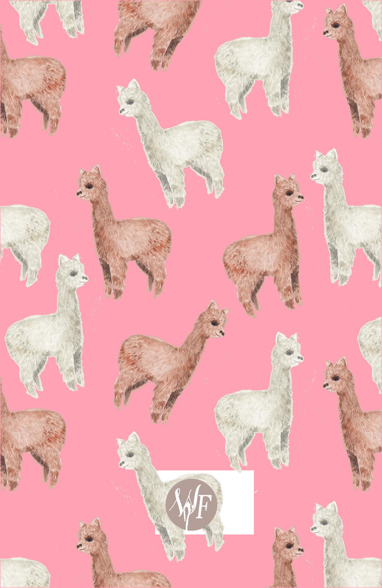 Alpaca Casetify Iphone Art Design Cute Animals