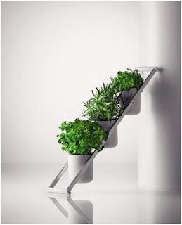 Escalera decorativa para plantas ideas para el hogar for Ideas decorativas para el hogar