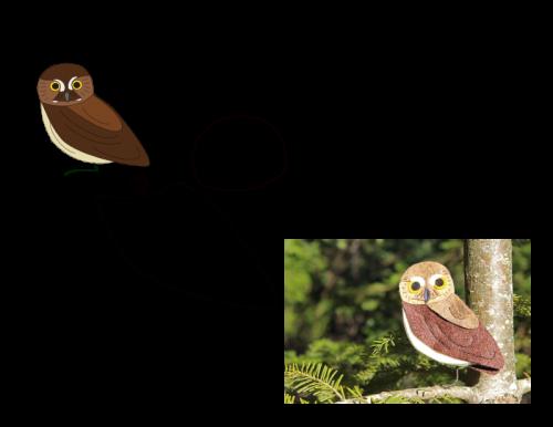 elfowl #feltbirds