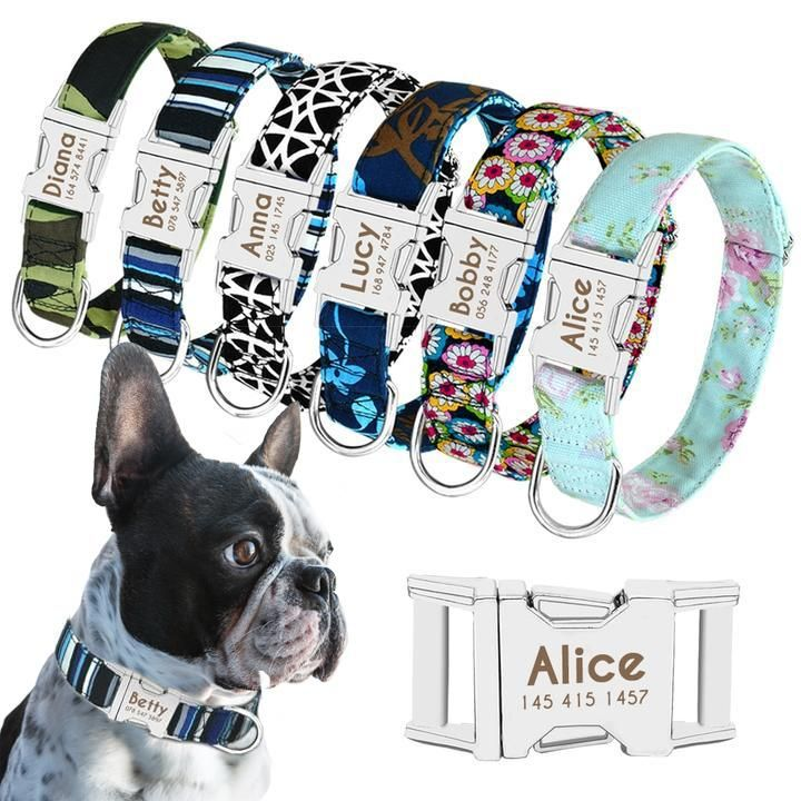 Personalized Engraved Frenchie Collar