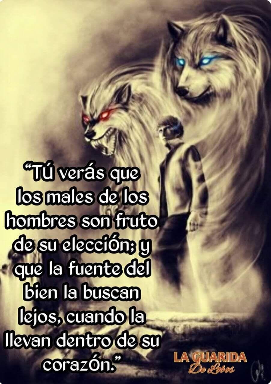 Pin von El dúo. dúo. auf Lobos Solitarios... | Pinterest