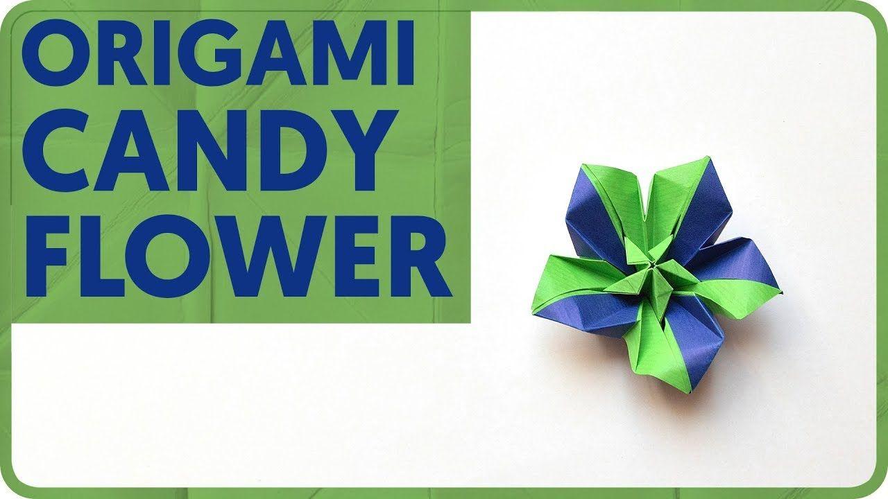 Diagram Candy Flower Origami Matsui Erika Modular Flowers Diagrams