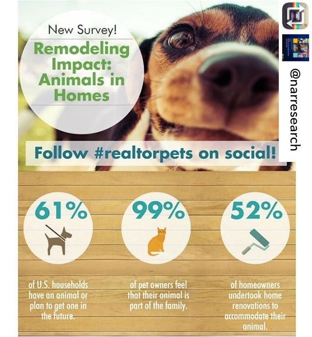 Remodeling Impact: Animals in Homes 99% of pet owners feel that ...
