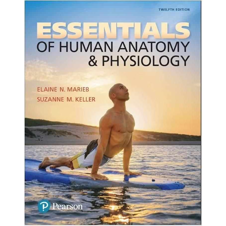 Essentials of Human Anatomy and Physiology 12th Edition PDF | Human ...