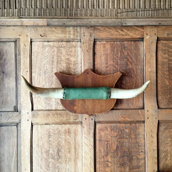 Vintage Steer Horns Bull Mounted Cow Western Wall Decor Real Taxidermy Nice Set Of Authentic