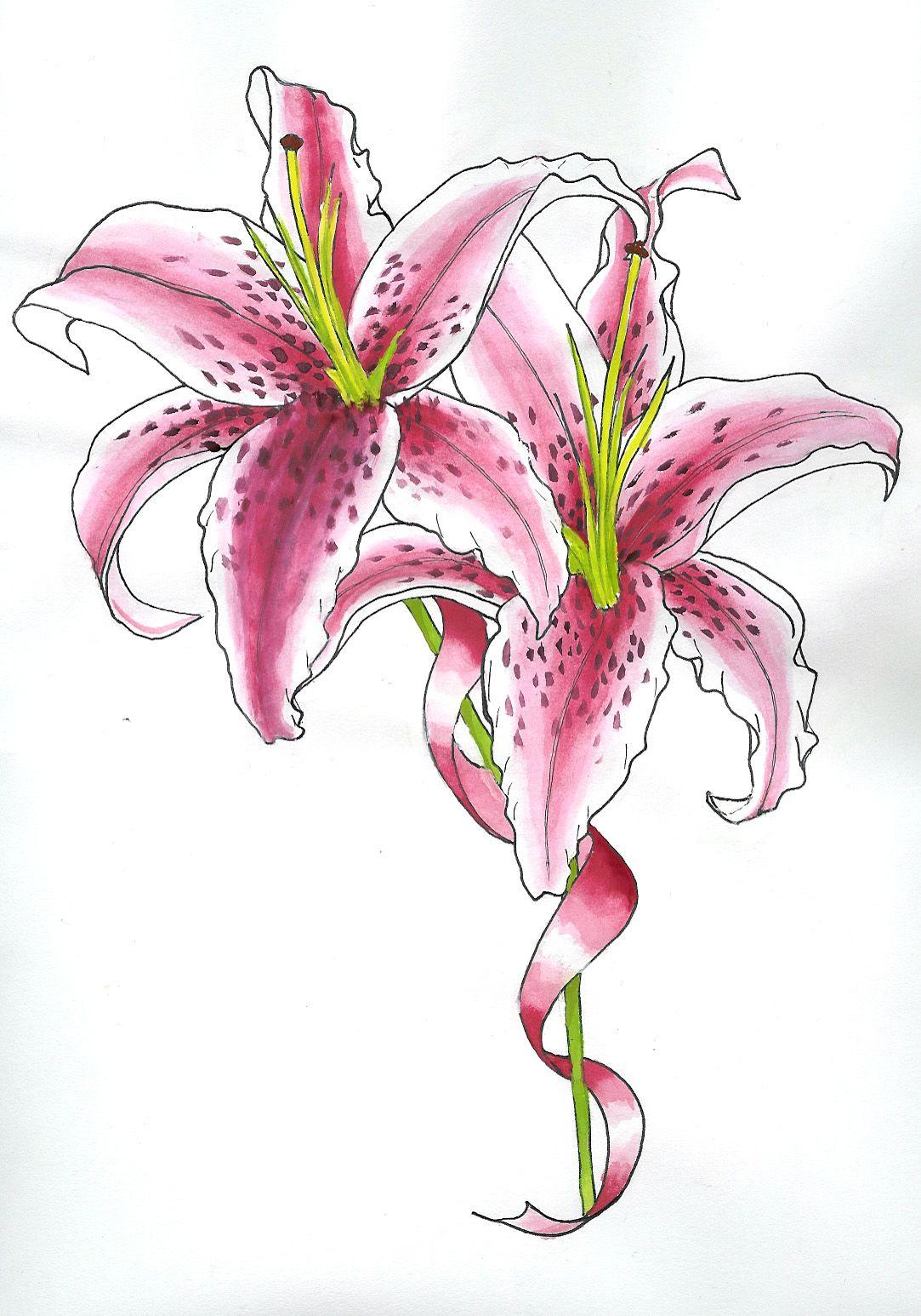 star lily tattoo paint by Kirin on DeviantArt Lily