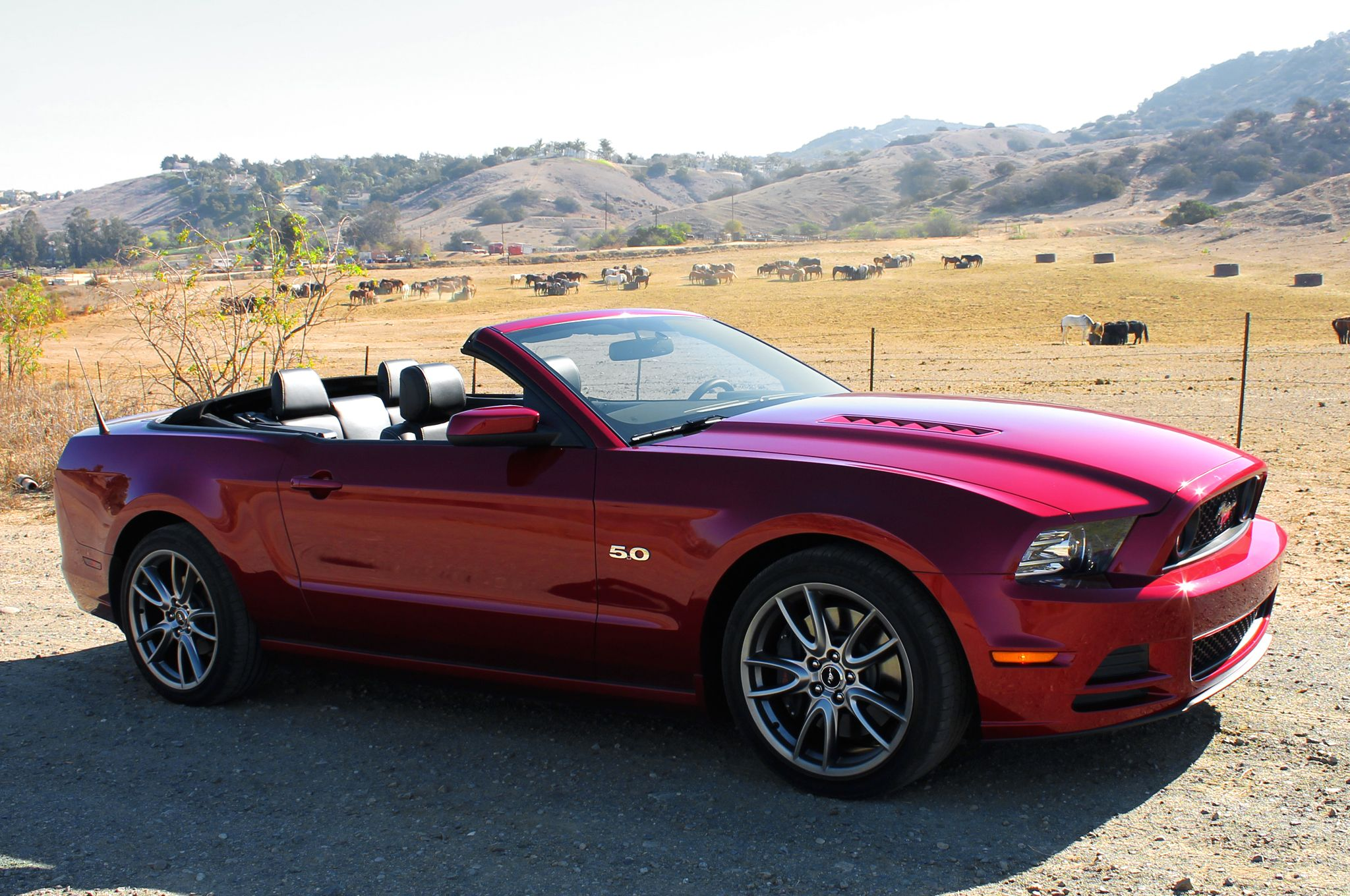 2014 Ford Mustang Gt Convertible First Test Ford Mustang Ford