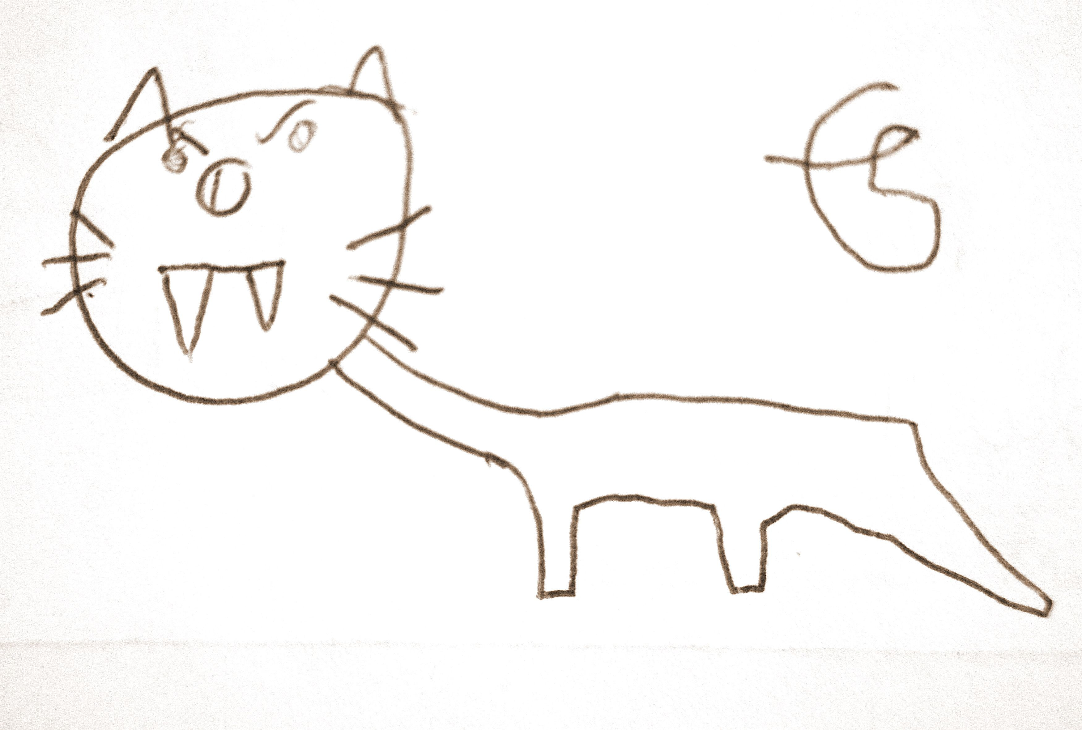 Le tigre aux dents de sabre tigre drawing dessins d 39 enfants children 39 s drawings dent de - Dessin de sabre ...