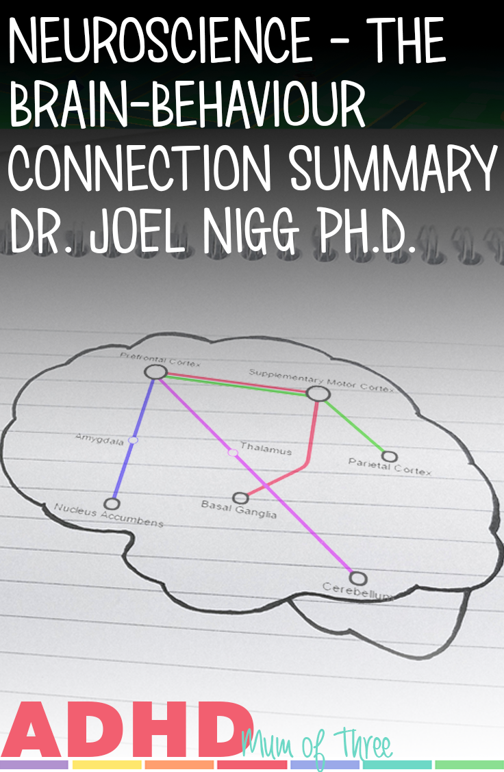A look at the science behind ADHD summarising the webinar entitled ADHD: The Brain-Behaviour Connection by Dr. Joel Nigg Ph.D. via @ADHDMumofThree