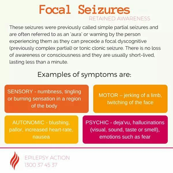 Focal Seizures   on the nose rubbing!!! | supporting my
