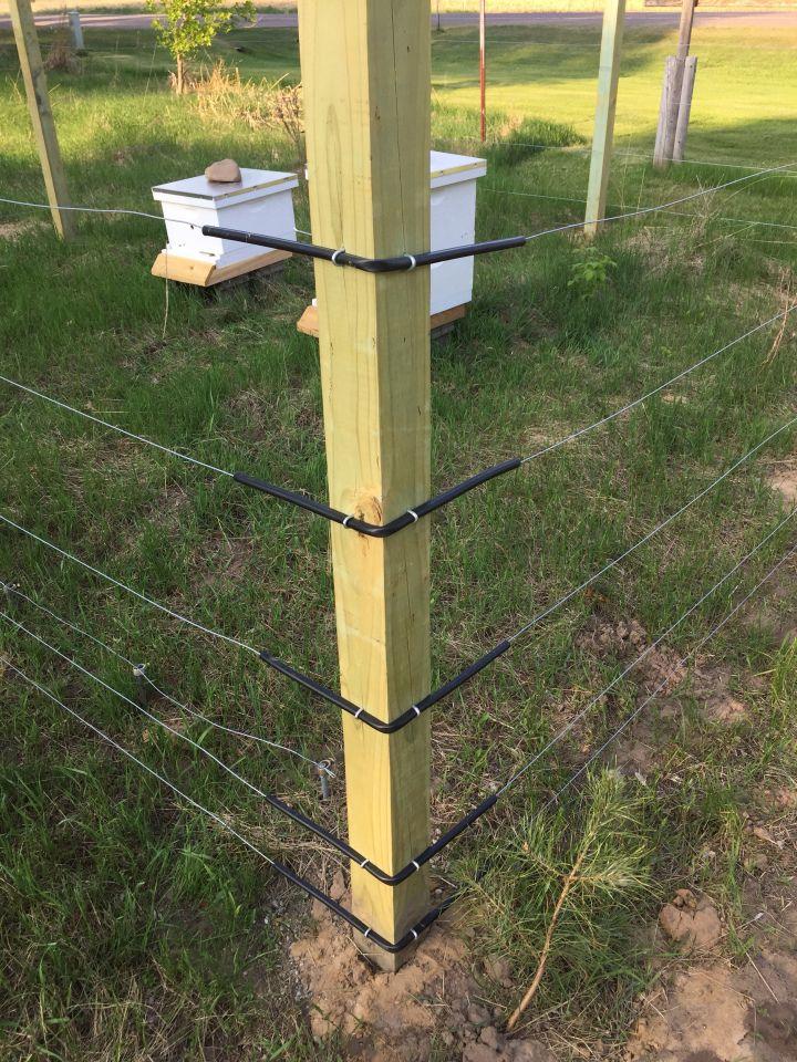 Beekeeping 101 - Buliding a Bee Yard in 2020 | Backyard ...