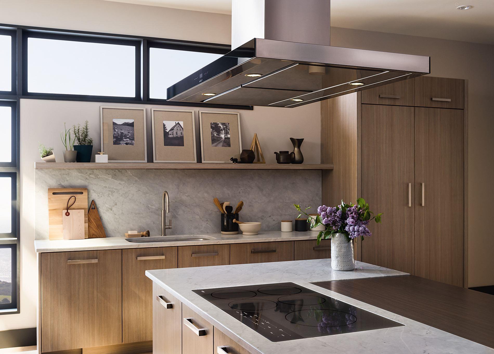 Wolf Low Profile Modern Island Hood Review Cteih42i Kitchen Island With Cooktop Kitchen Ventilation Kitchen Hood Design