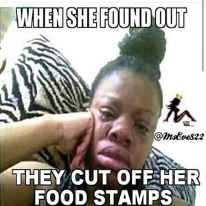 5fd0523671a367360e6c56c82dc56c09 cut my food stamps funny food stamp meme food stamps jokes