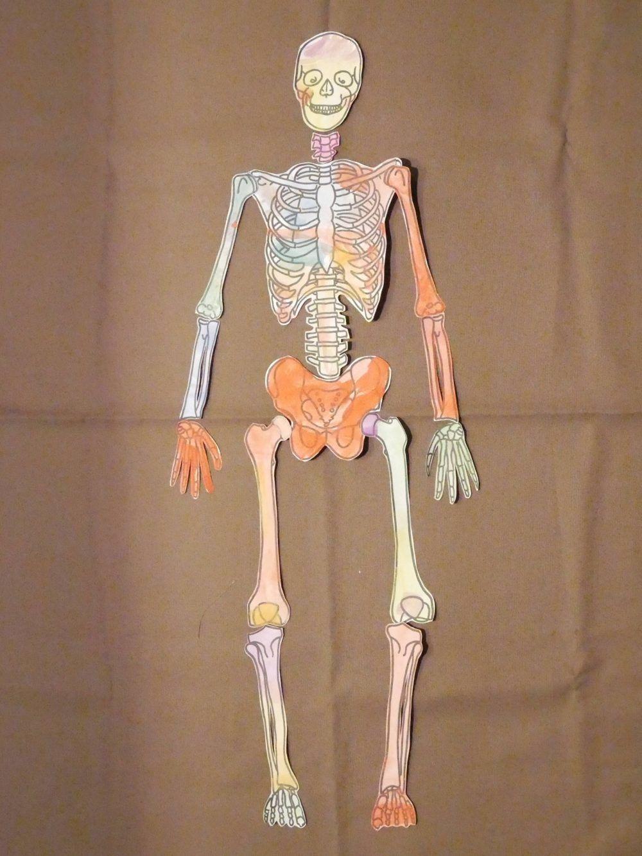Skeleton Puzzle Szkielet Czlowieka Zelda Characters Character Princess Zelda