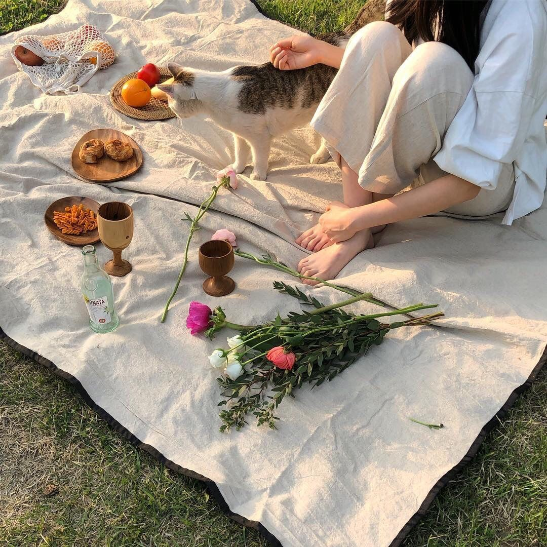 𝙛𝙤𝙡𝙡𝙤𝙬 𝙛𝙤𝙧 𝙢𝙤𝙧𝙚 Picnic Inspiration Summer Picnic Picnic Date