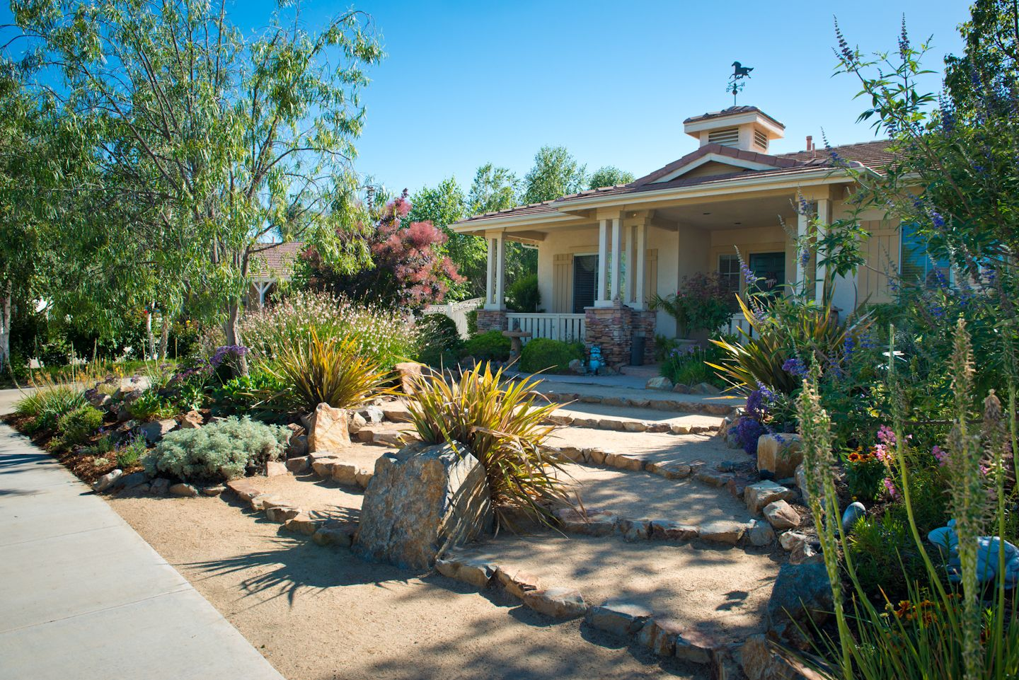 waterwise front yard landscape |  front door and they used the