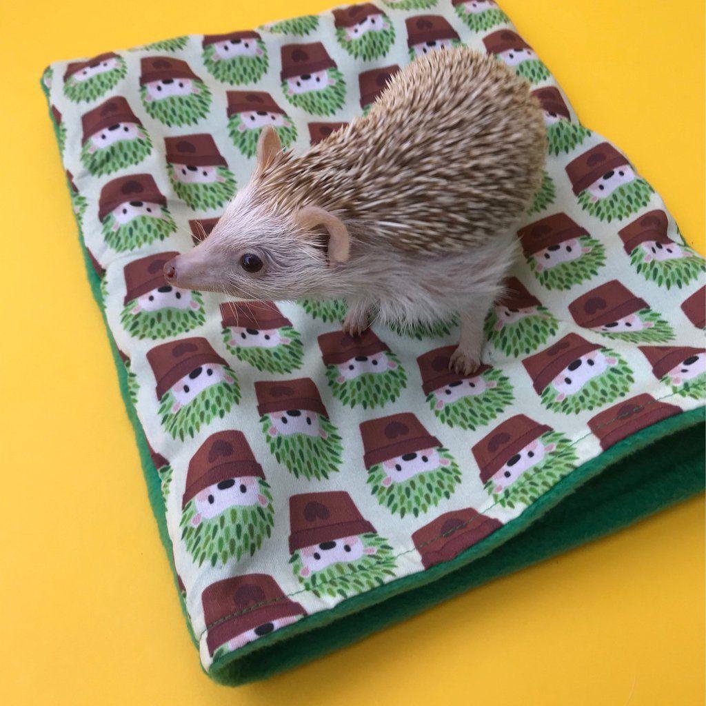 Cactus hedgehog snuggle sack. Small animal sleeping bag