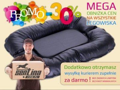 Piekne Legowisko Dla Psa Kurier 0zl Duzy Wybor 4910475708 Oficjalne Archiwum Allegro Bean Bag Chair