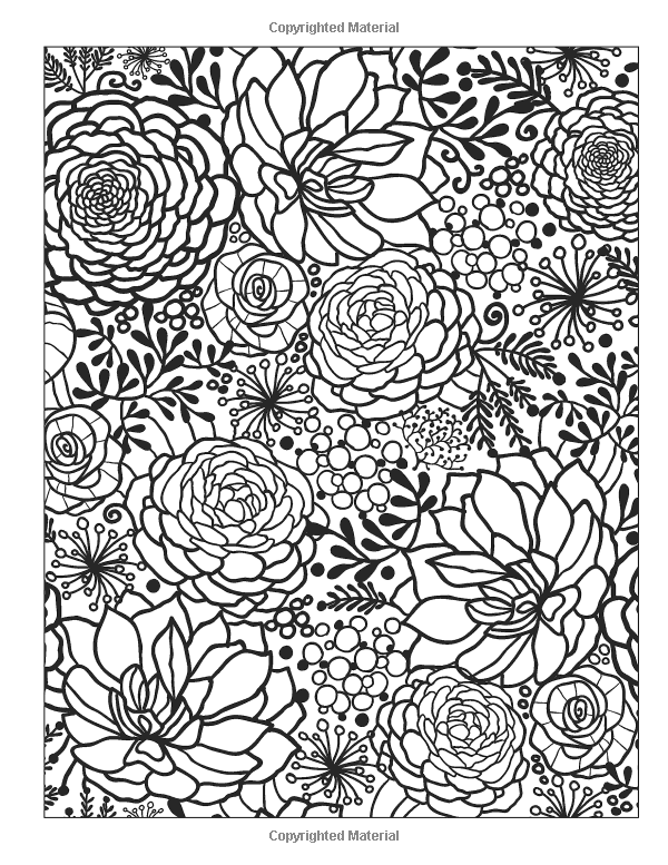 The Calm Coloring Book Chartwell Coloring Books