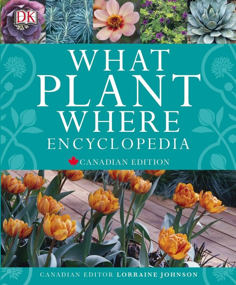 What Plant Where Encyclopedia , edited by Lorraine Johnson ...