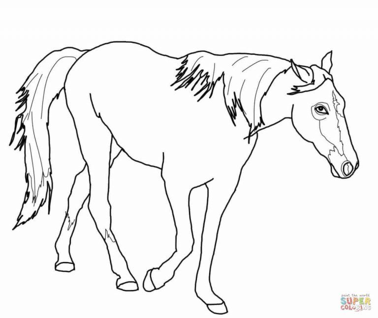 Clydesdale Horse Coloring Page Free Printable Coloring Pages Pertaining To Clydesdale Horse Horse Coloring Horse Coloring Pages Free Printable Coloring Pages