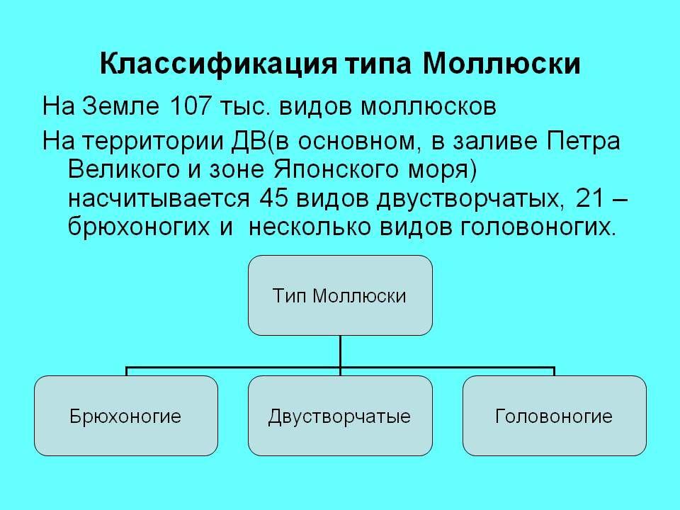 Гдз по алгебре класс домашняя контрольная работа laotempart  Гдз по алгебре класс домашняя контрольная работа