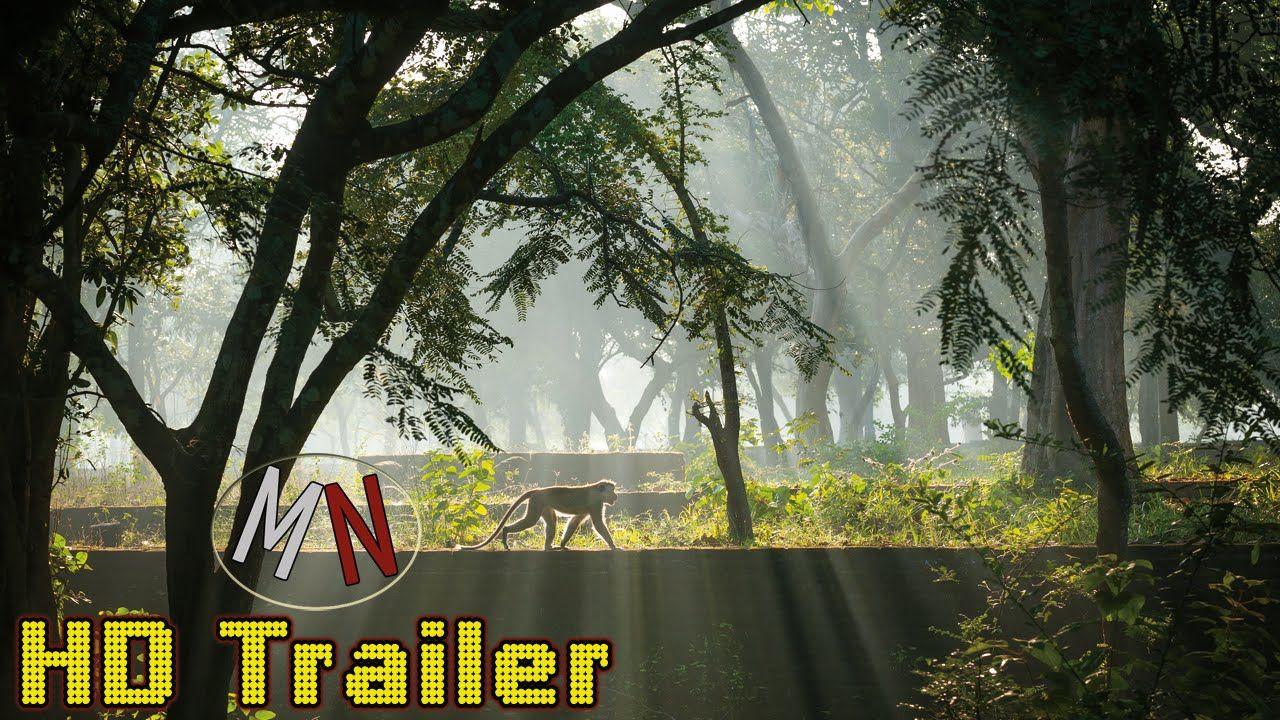 *Im Reich der Affen* HD Trailer German / Deutsch | Kinostart: 10. Septem...
