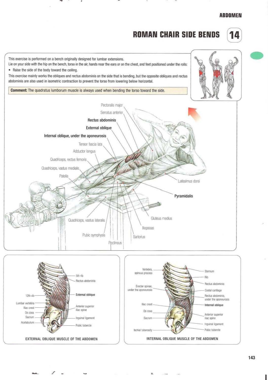 Strength training anatomy 14. Roman Chair Side Bends Abs, core, six ...