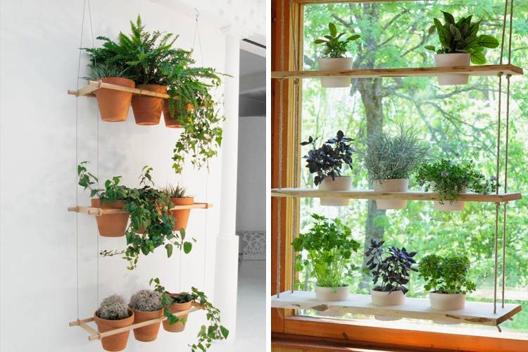 Ideas para decorar con estanter as colgantes houseplants for Estanteria jardin plantas