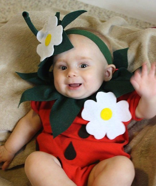 Strawberry baby dresses pinterest baby halloween costumes baby diy strawberry do it yourself baby costume halloween costume strawberry costume solutioingenieria Choice Image