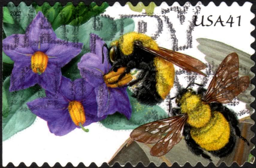 USA - BEE Postage Stamp