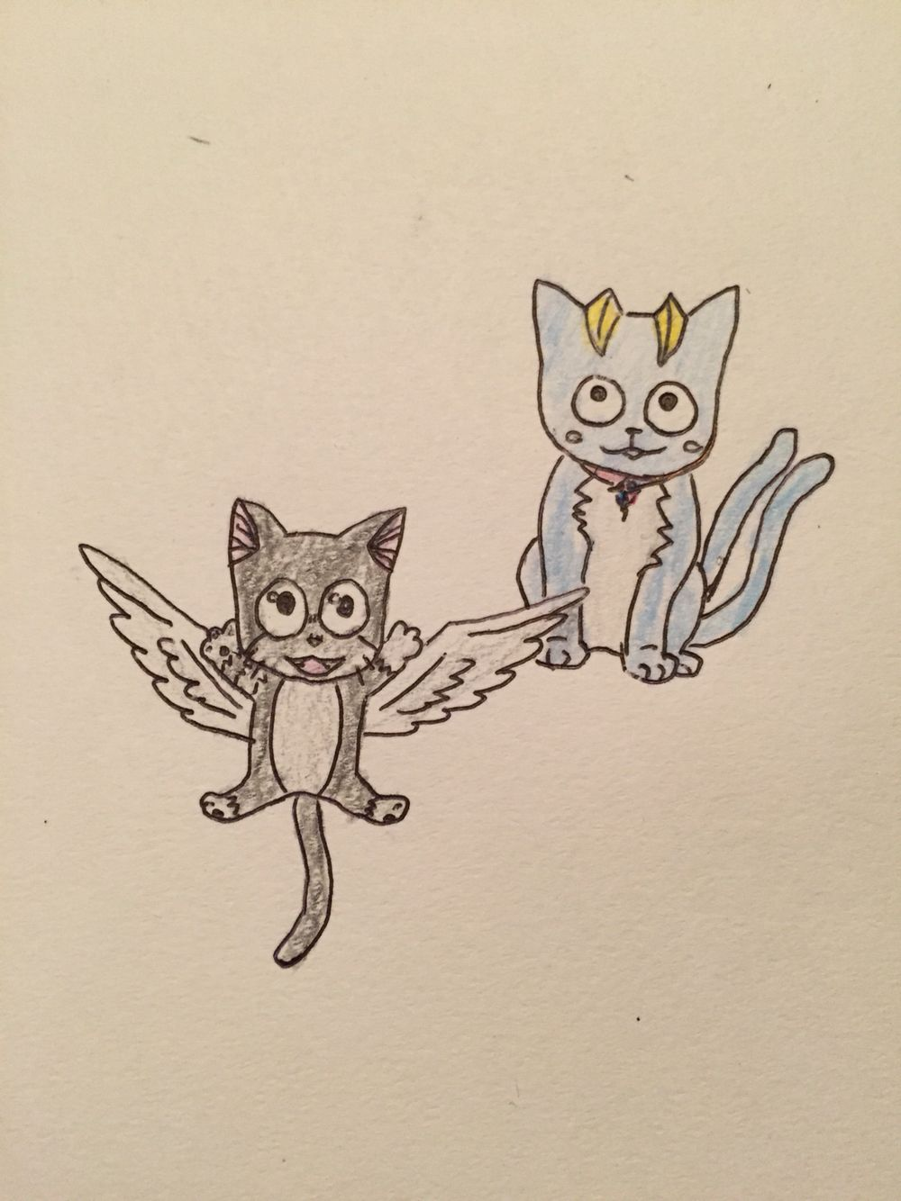 What if Happy from Fairy Tail was Cat sidhe and Kuro from