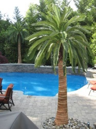 Artificial palm trees around the pool dream home in 2019 pool landscaping palm trees palm for Best palm tree for swimming pool