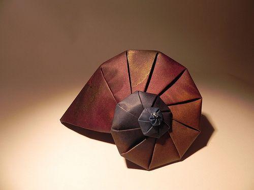 Origami nautilus folded by Hilli Zenz; original design by Tomoko Fuse.