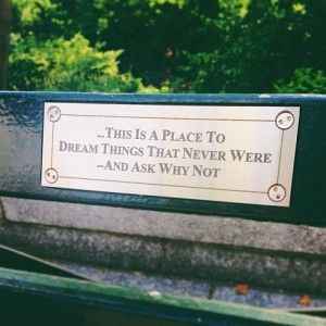 Central Park Or Thinking About The Inspiring Quote On A Park Bench