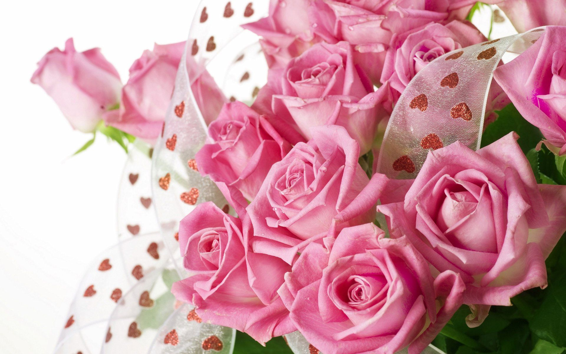 One Dozen Light Pink Roses At From You Flowers Are A Beautiful Expression
