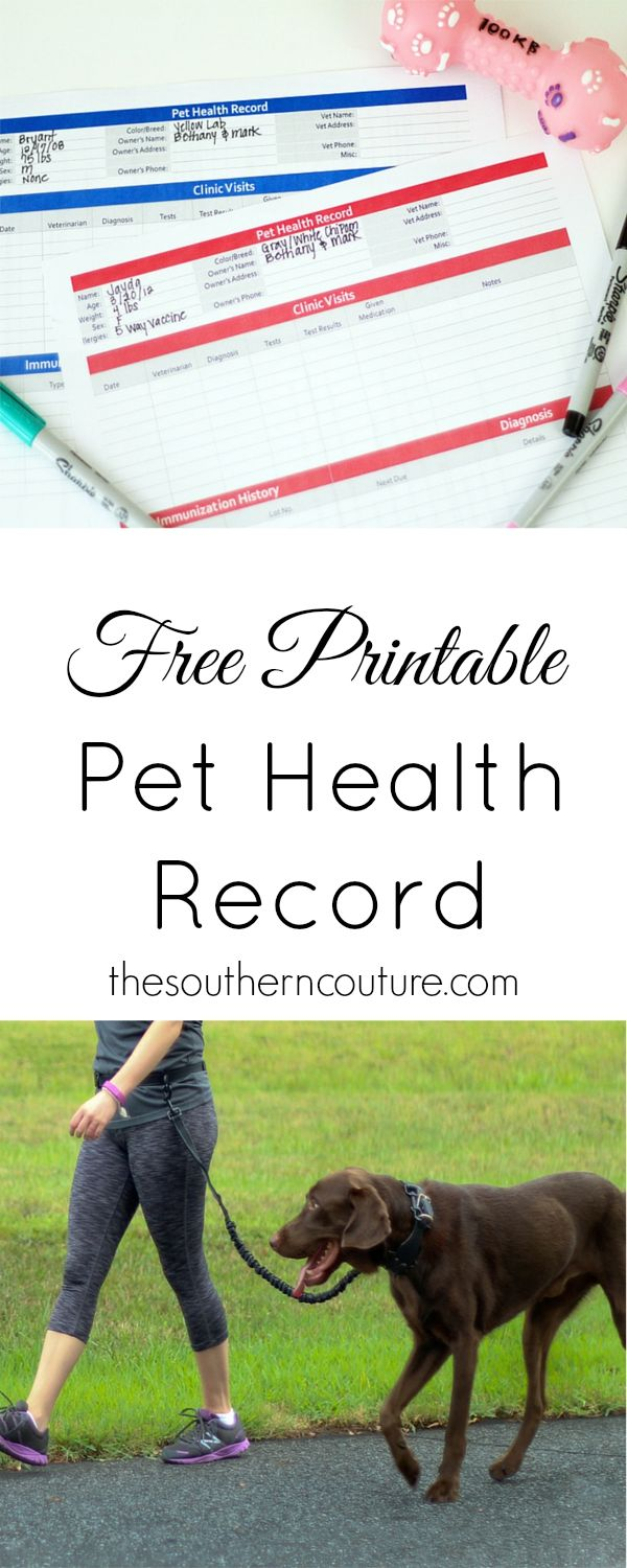 What All Pet Owners Should Have + {A Free Printable} Dog