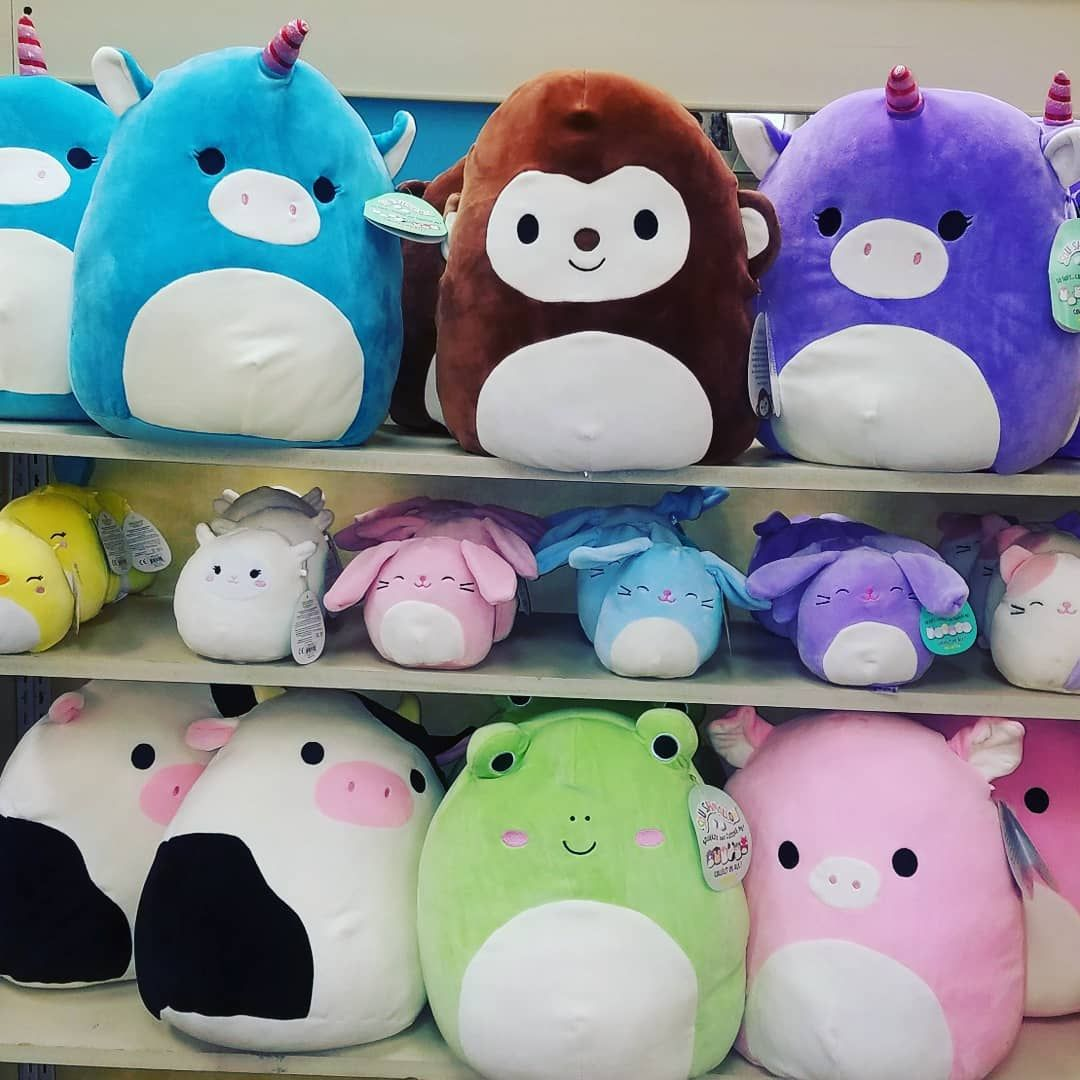 Just Arrived Squishmallows These Plush Animals Feel Just Like A Marshmallow Perfect To Snuggle Up And Wat Cute Stuffed Animals Cute Plush Kawaii Plushies