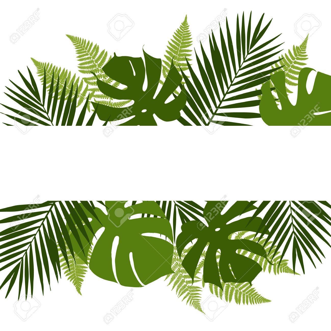 328 777 Jungle Stock Vector Illustration And Royalty Free Jungle Leaf Background Flower Frame Leaf Wallpaper