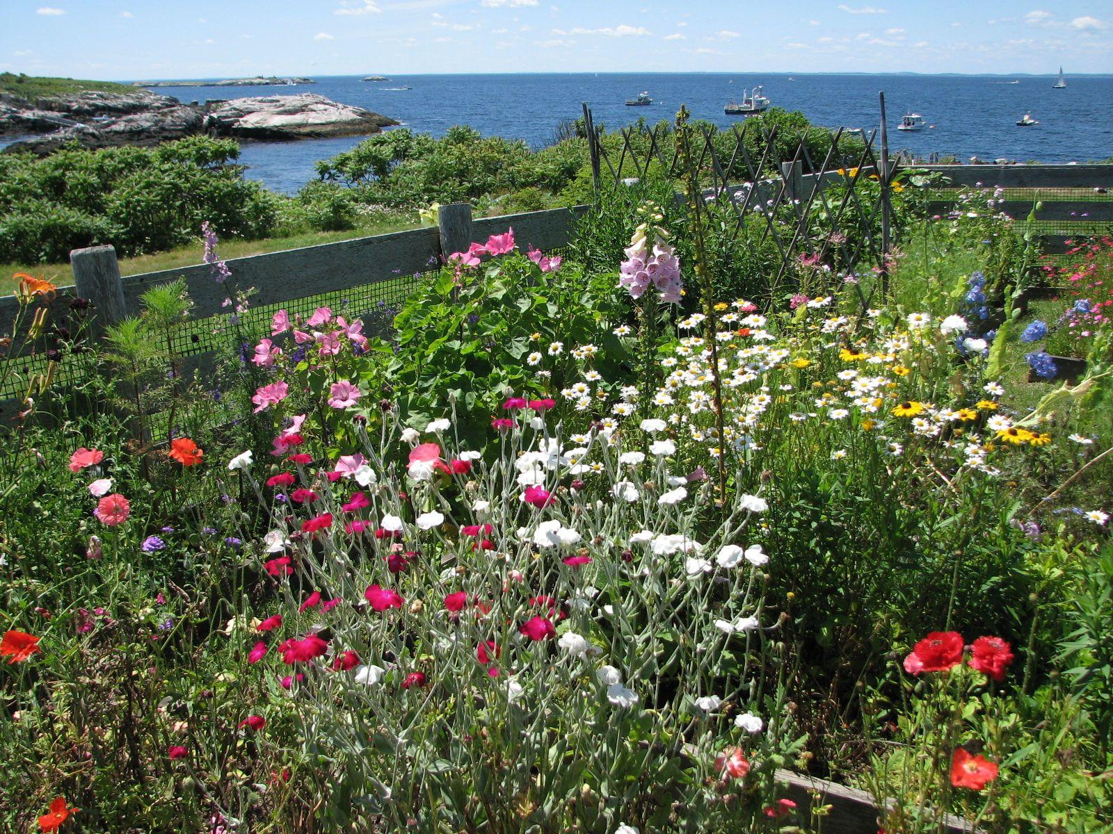 isles of shoals Celia Thaxter's garden next last Dream