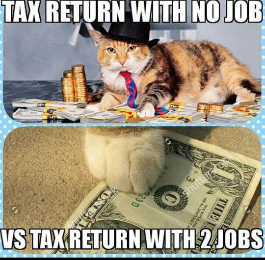 5fdbb08d6614e32203275182cd0791d3 tax return with no job,vs tax return with 2 jobs,meme memes