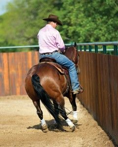 Horse Training: Rollback on the Fence from Horse | EquiSearch