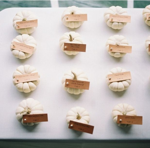 mini white pumpkins for place cards - Fall-ish but
