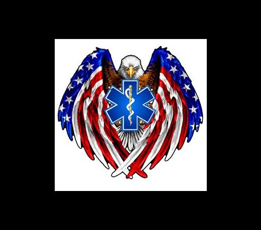 USA shield shape pin badge Last 4 Eagle design with flag