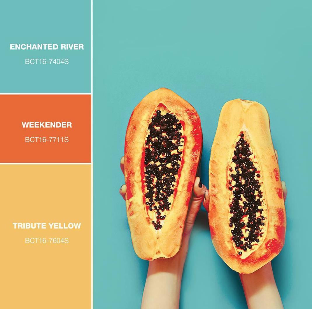 small resolution of freshest picks of the season boysenpaints boysen colors papaya paint