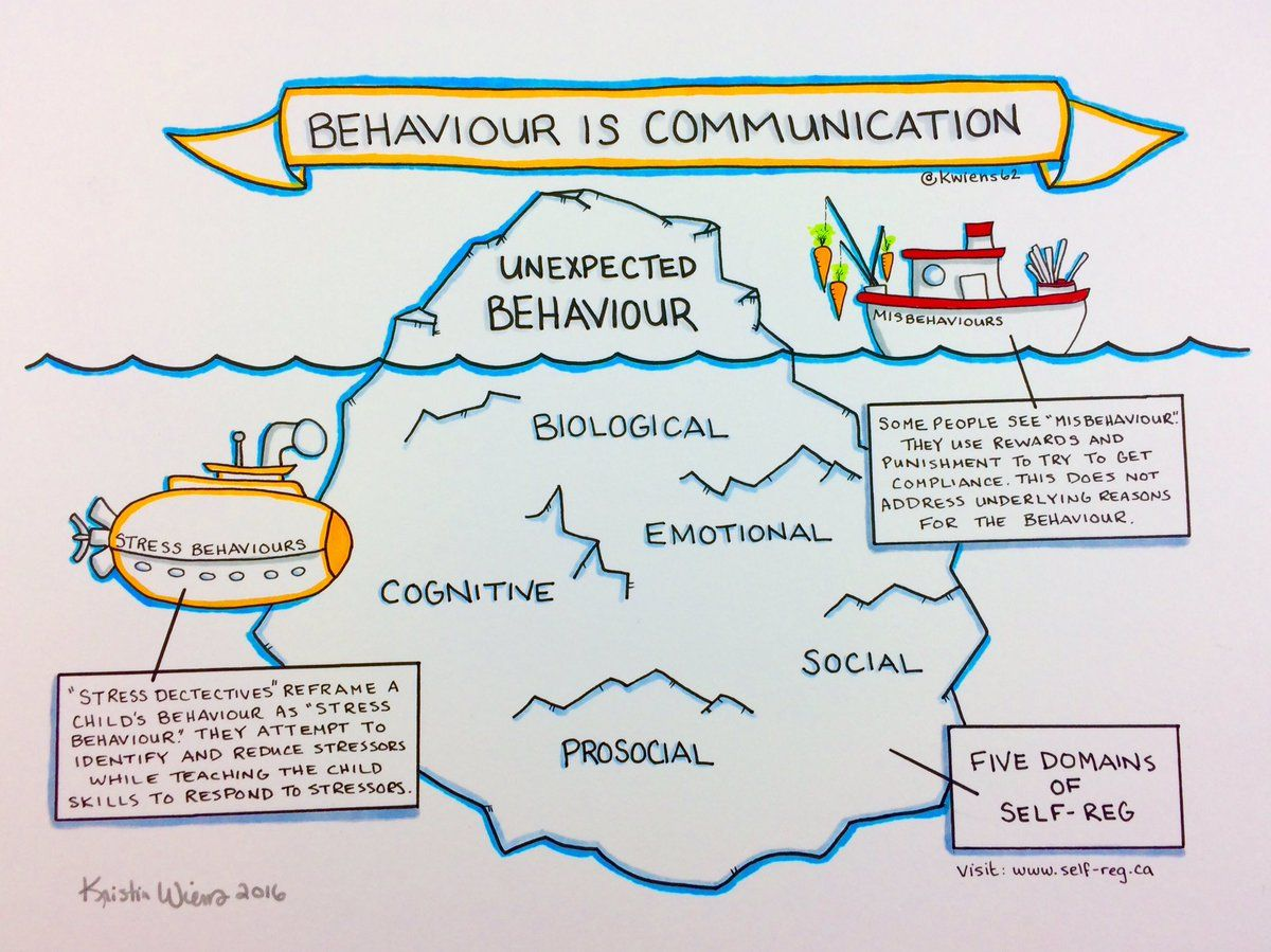 Behaviour Is Communication Iceberg