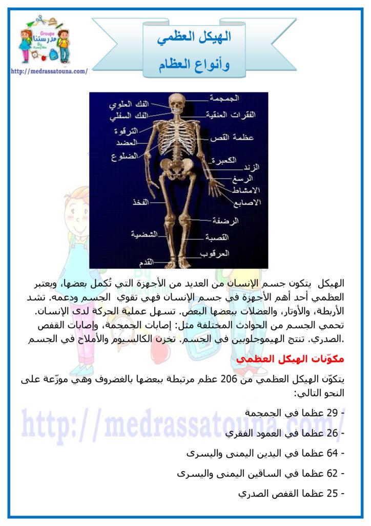 الهيكل العظمي وأنواع العظام مدرستنا Uig Movie Posters Movies