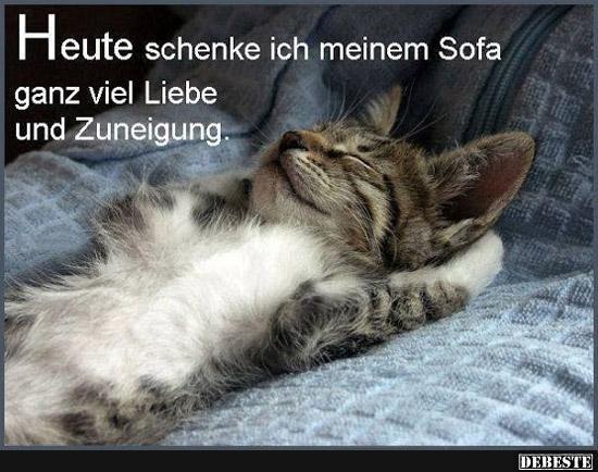 Heute Schenke Ich Meinem Sofa Ganz Viel Liebe Lustige Bilder Spruche Witze Echt Lustig Lustige Katzen Katzen Lustige Spruche Katzenspruche